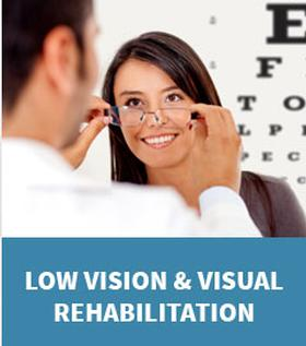 Graphic link to the Low Vision and Visual Rehabilitation Page